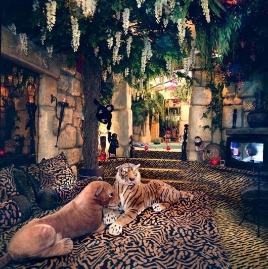 foto jungle kamer